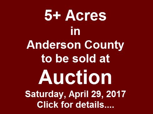 Auction April-29-2017-490x365