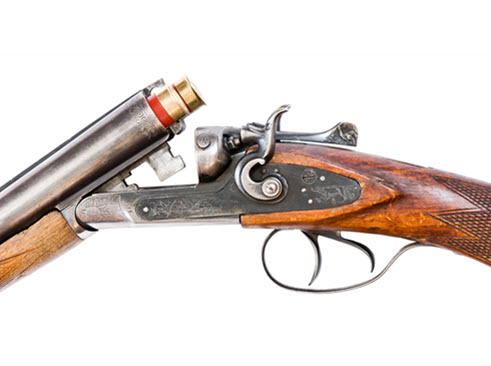rifle-491x365