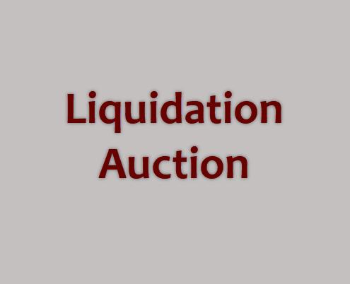 liquidation auction-491x365